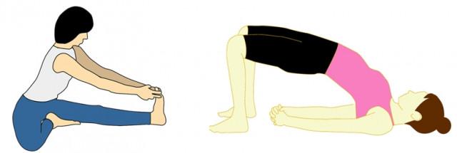 腰痛改善の体操
