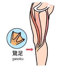 鵞足部分 ガチョウの足